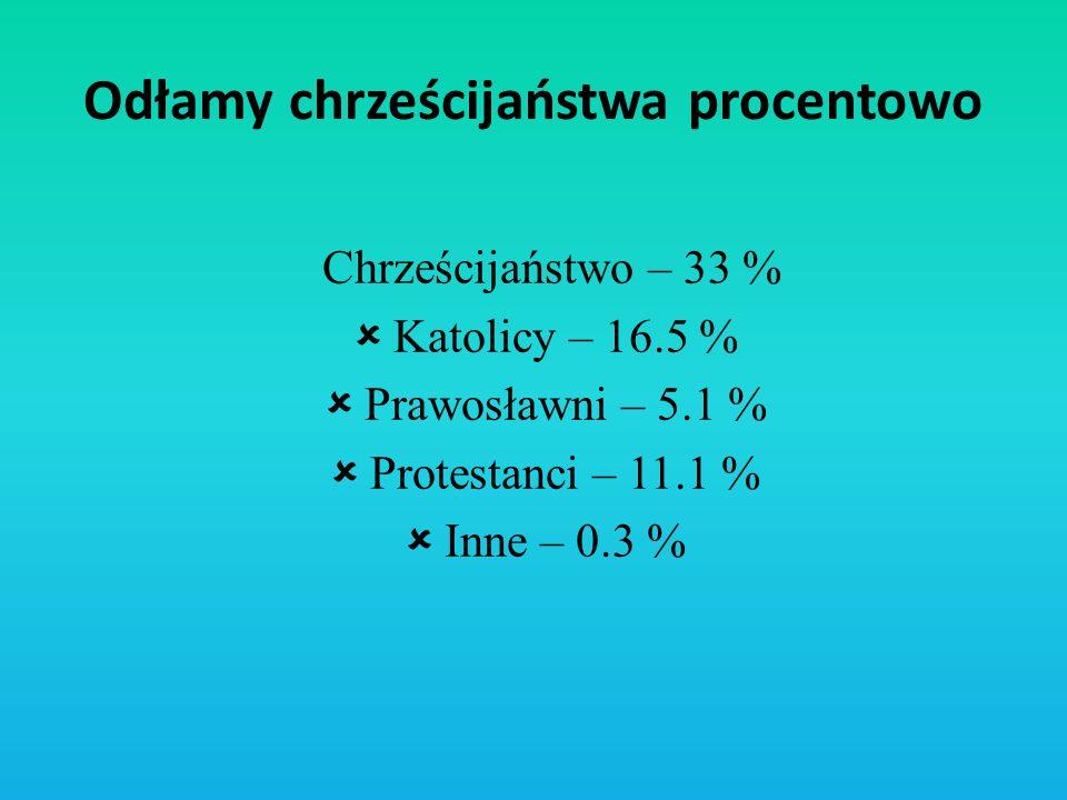 Odłamy chrześcijaństwa procentowo Chrześcijaństwo – 33 %  Katolicy – 16.5 %  Prawosławni – 5.1 %  Protestanci – 11.1 %  Inne – 0.3 %