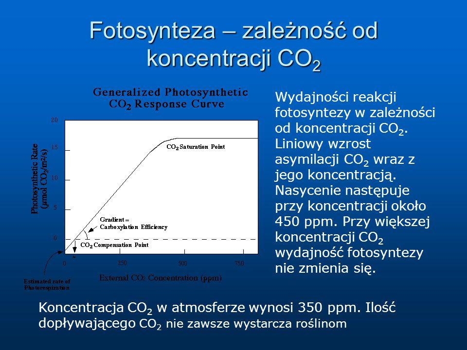 Fotosynteza – zależność od koncentracji CO 2 Wydajności reakcji fotosyntezy w zależności od koncentracji CO 2. Liniowy wzrost asymilacji CO 2 wraz z j