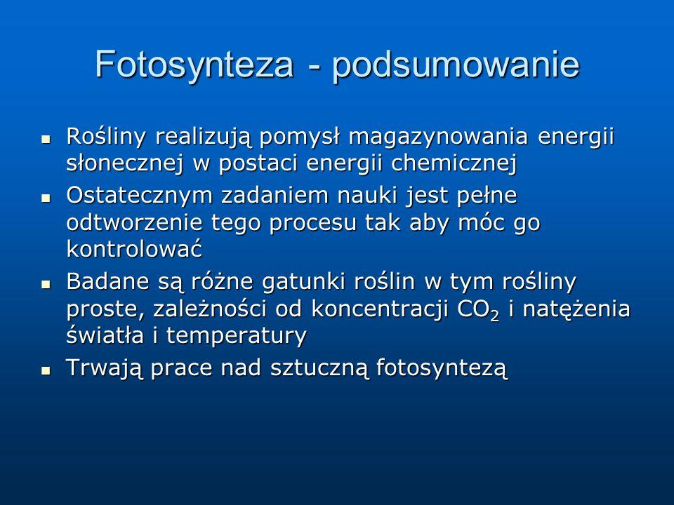Fotosynteza - podsumowanie Rośliny realizują pomysł magazynowania energii słonecznej w postaci energii chemicznej Rośliny realizują pomysł magazynowan