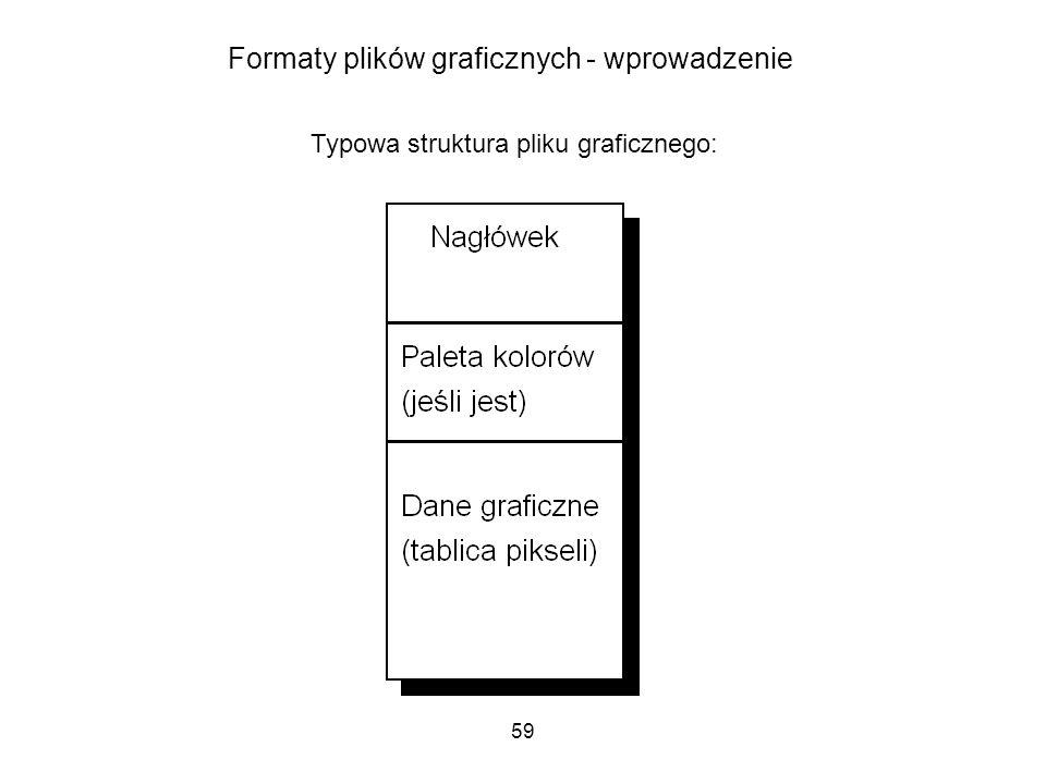 59 Formaty plików graficznych - wprowadzenie Typowa struktura pliku graficznego: