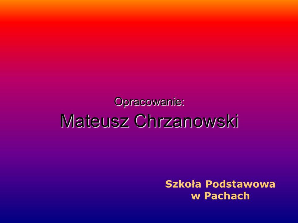 Opracowanie: Mateusz Chrzanowski Szkoła Podstawowa w Pachach