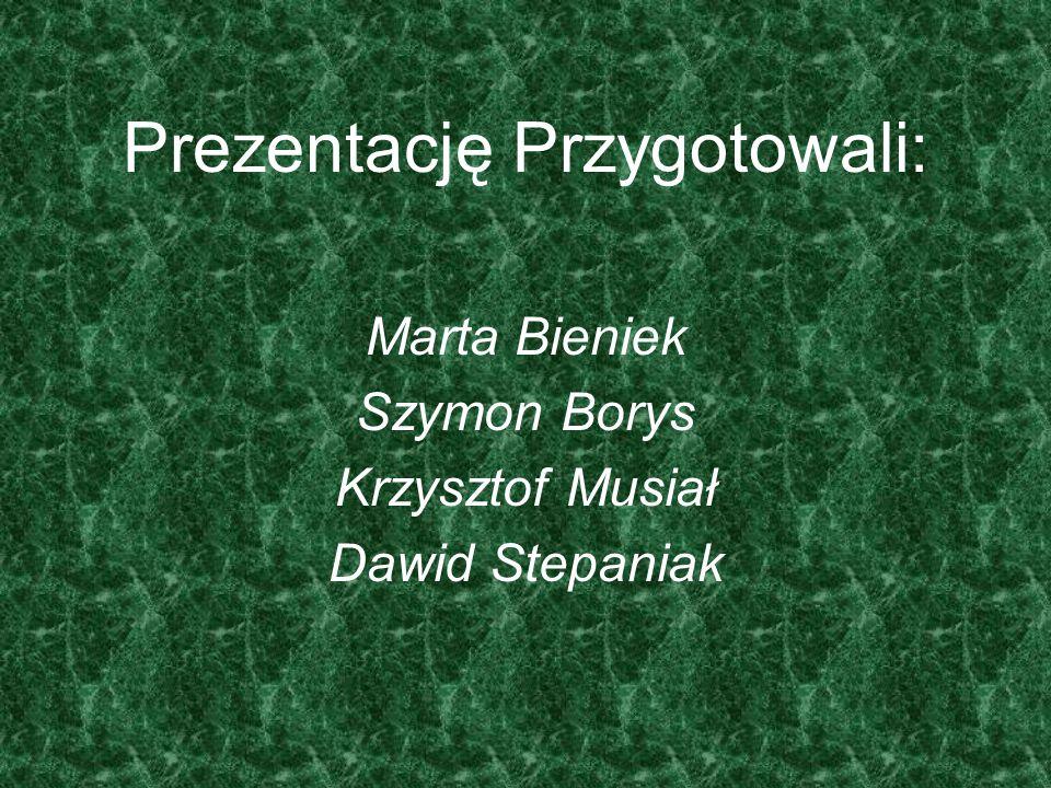 Prezentację Przygotowali: Marta Bieniek Szymon Borys Krzysztof Musiał Dawid Stepaniak