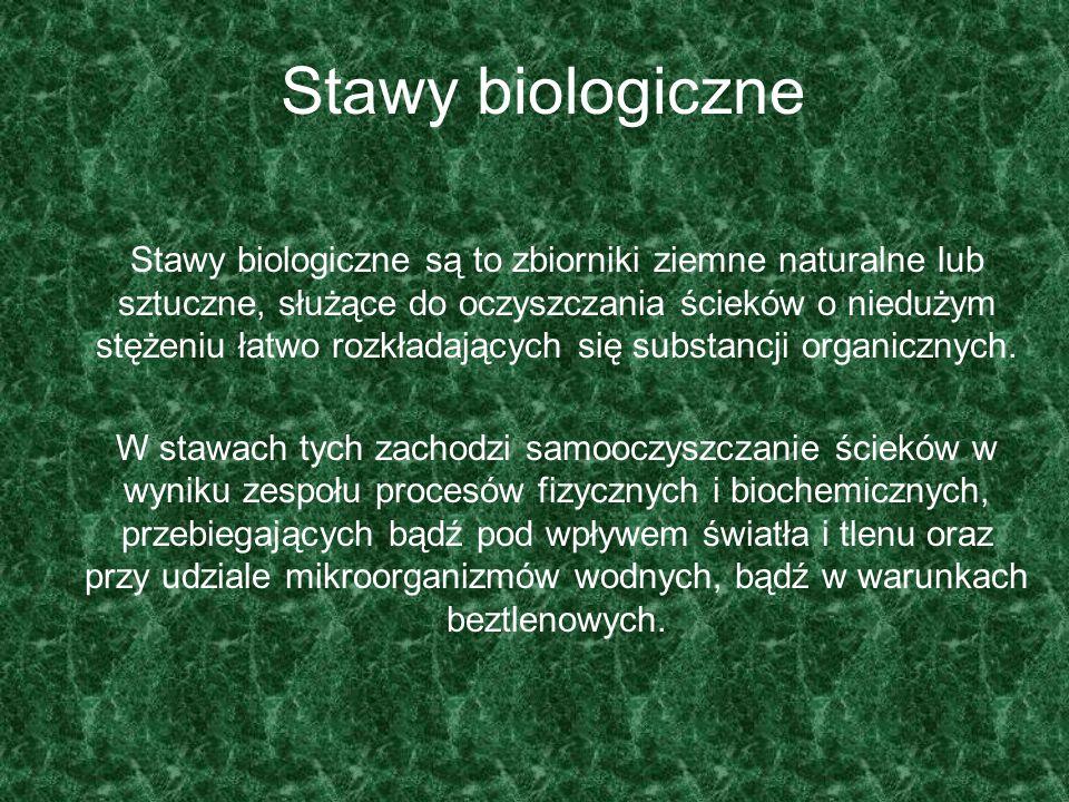 Stawy biologiczne Stawy biologiczne są to zbiorniki ziemne naturalne lub sztuczne, służące do oczyszczania ścieków o niedużym stężeniu łatwo rozkładaj