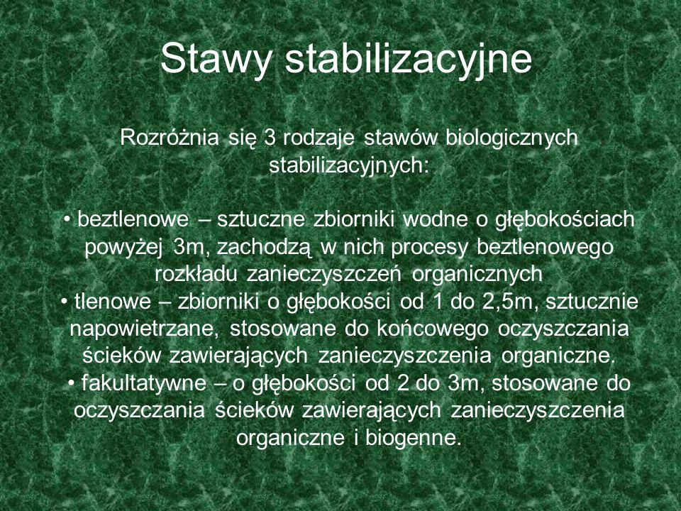 Stawy stabilizacyjne Rozróżnia się 3 rodzaje stawów biologicznych stabilizacyjnych: beztlenowe – sztuczne zbiorniki wodne o głębokościach powyżej 3m,