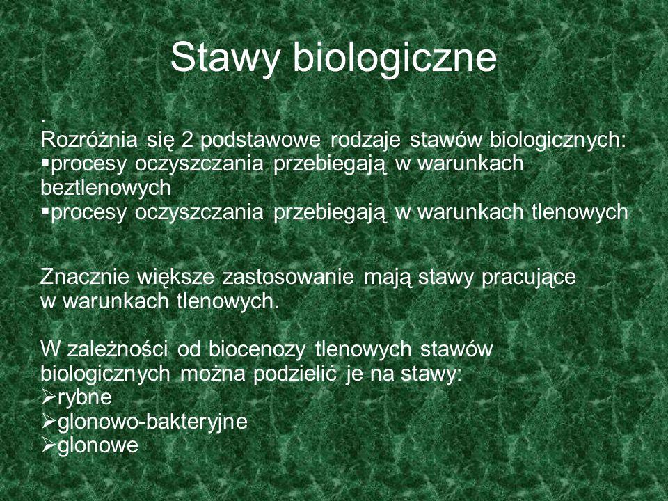 Stawy biologiczne. Rozróżnia się 2 podstawowe rodzaje stawów biologicznych:  procesy oczyszczania przebiegają w warunkach beztlenowych  procesy oczy