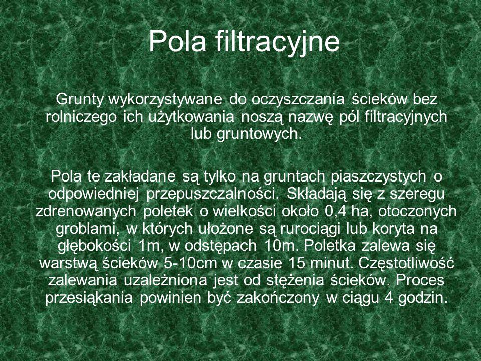 Pola filtracyjne Grunty wykorzystywane do oczyszczania ścieków bez rolniczego ich użytkowania noszą nazwę pól filtracyjnych lub gruntowych. Pola te za