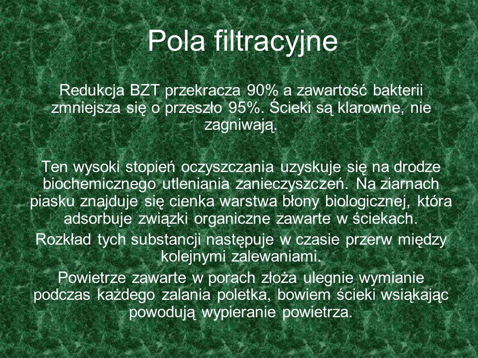 Pola filtracyjne Redukcja BZT przekracza 90% a zawartość bakterii zmniejsza się o przeszło 95%. Ścieki są klarowne, nie zagniwają. Ten wysoki stopień