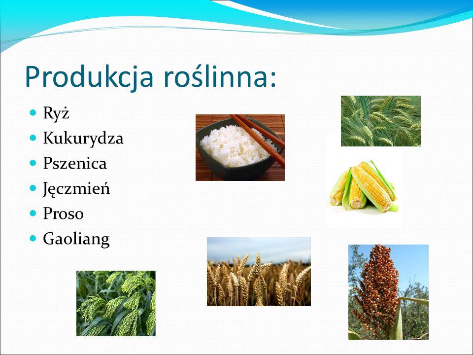 Produkcja roślinna: Ryż Kukurydza Pszenica Jęczmień Proso Gaoliang