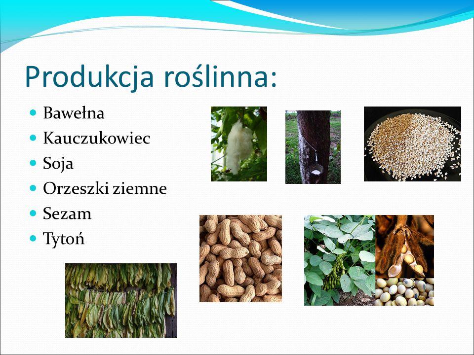 Produkcja roślinna: Bawełna Kauczukowiec Soja Orzeszki ziemne Sezam Tytoń