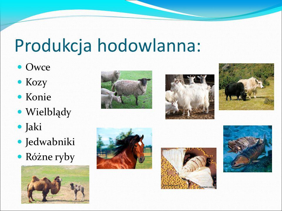 Produkcja hodowlanna: Owce Kozy Konie Wielblądy Jaki Jedwabniki Różne ryby
