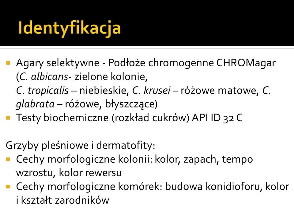  Agary selektywne - Podłoże chromogenne CHROMagar (C. albicans- zielone kolonie, C. tropicalis – niebieskie, C. krusei – różowe matowe, C. glabrata –