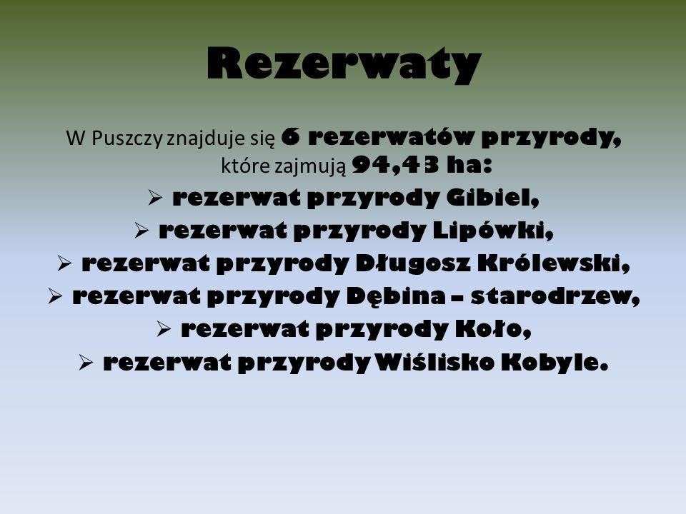 Rezerwaty W Puszczy znajduje się 6 rezerwatów przyrody, które zajmują 94,43 ha:  rezerwat przyrody Gibiel,  rezerwat przyrody Lipówki,  rezerwat pr