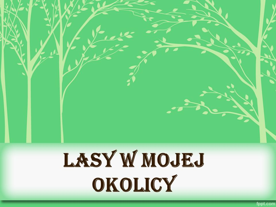 Polskie lasy Polska jest na jednym z pierwszych miejsc w Europie z największą powierzchnią terenów zalesionych, wynoszącą 29,4%.