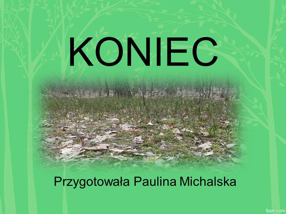 KONIEC Przygotowała Paulina Michalska
