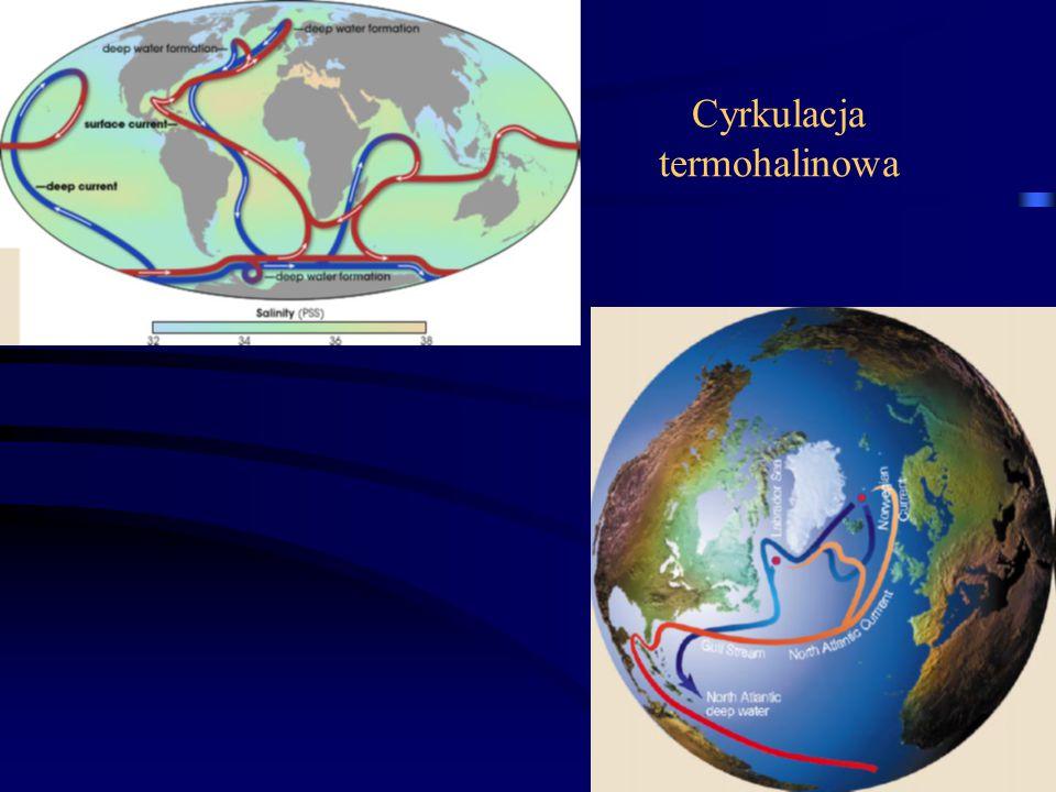 Cyrkulacja termohalinowa 14
