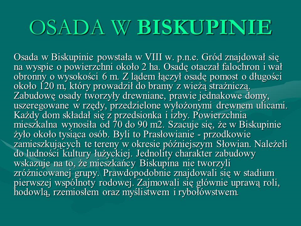 OSADA W BISKUPINIE Osada w Biskupinie powstała w VIII w. p.n.e. Gród znajdował się na wyspie o powierzchni około 2 ha. Osadę otaczał falochron i wał o