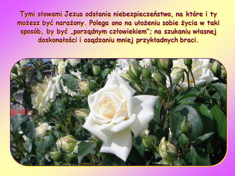 Trzeba się weselić i cieszyć z tego, że ten brat twój był umarły, a znów ożył; zaginął, a odnalazł się (Łk 15,32)