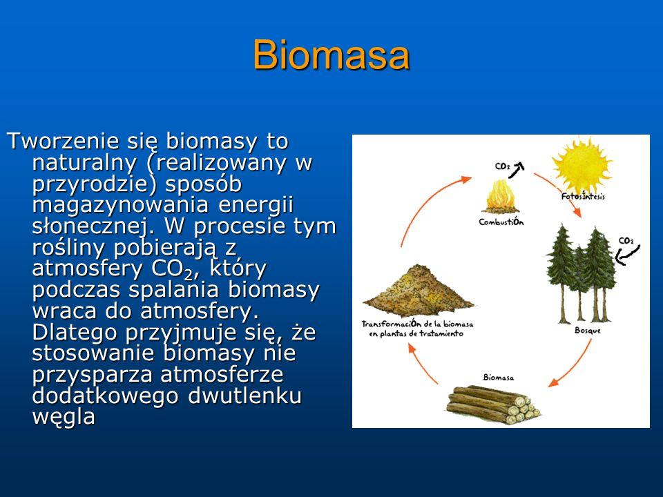 Biomasa Tworzenie się biomasy to naturalny (realizowany w przyrodzie) sposób magazynowania energii słonecznej.