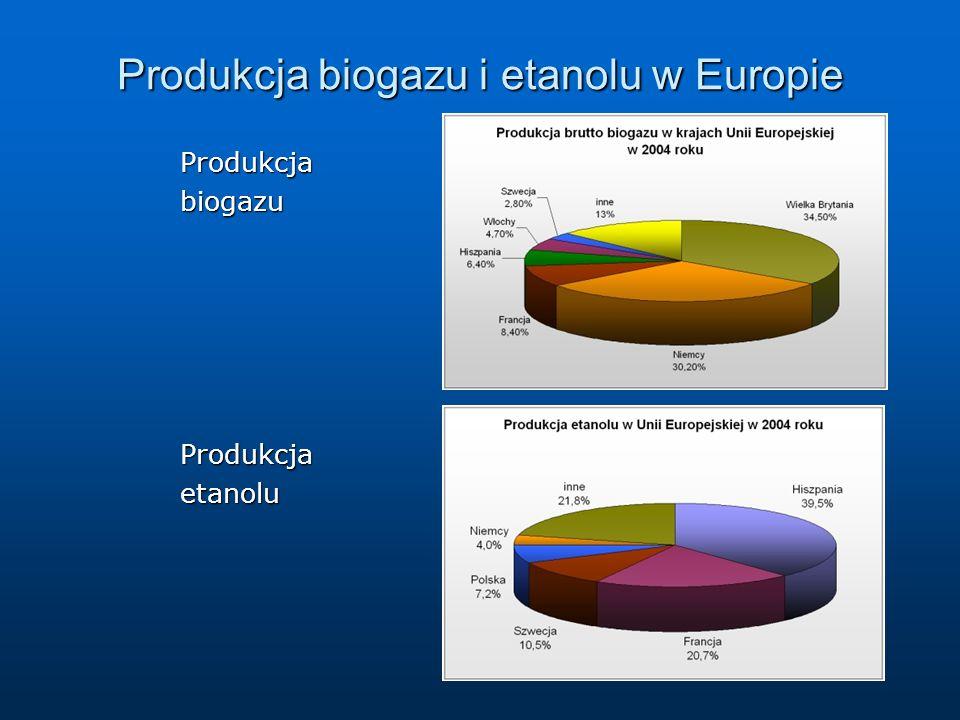 Produkcja biogazu i etanolu w Europie ProdukcjabiogazuProdukcjaetanolu
