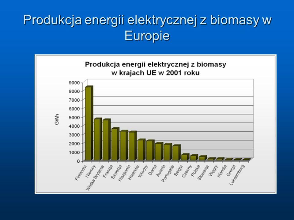Produkcja energii elektrycznej z biomasy w Europie
