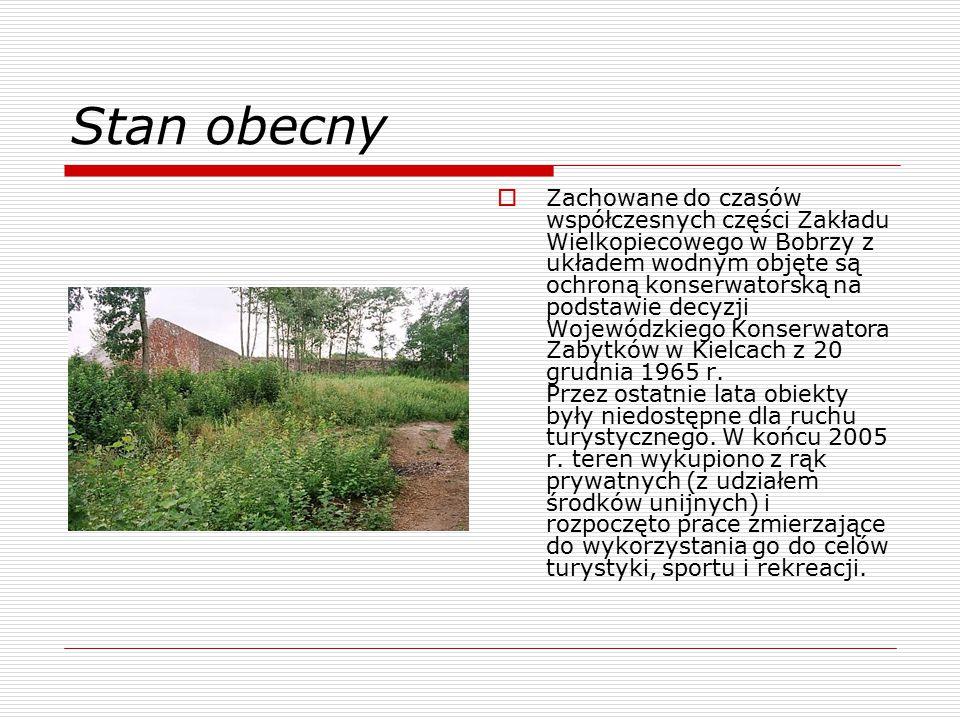 Stan obecny  Zachowane do czasów współczesnych części Zakładu Wielkopiecowego w Bobrzy z układem wodnym objęte są ochroną konserwatorską na podstawie decyzji Wojewódzkiego Konserwatora Zabytków w Kielcach z 20 grudnia 1965 r.