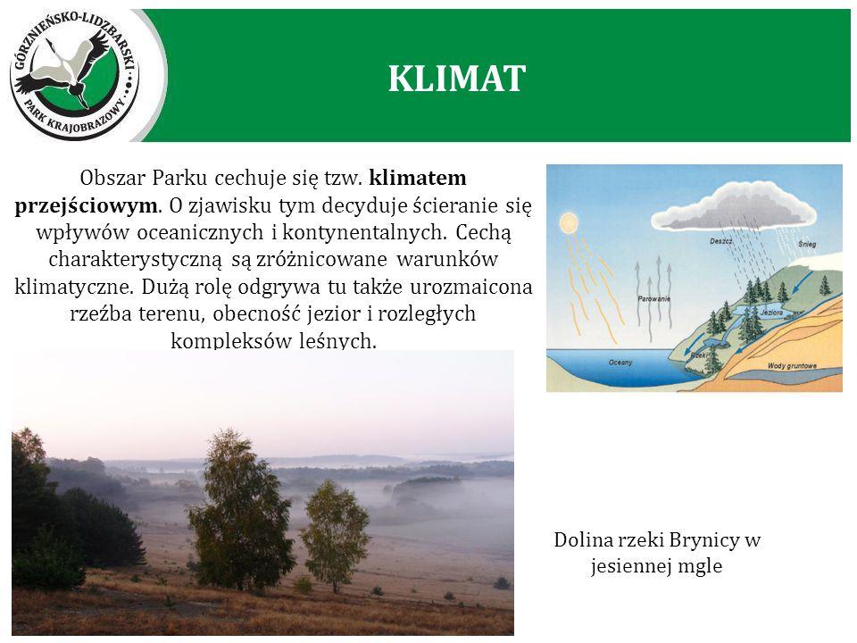 Obszar Parku cechuje się tzw. klimatem przejściowym. O zjawisku tym decyduje ścieranie się wpływów oceanicznych i kontynentalnych. Cechą charakterysty