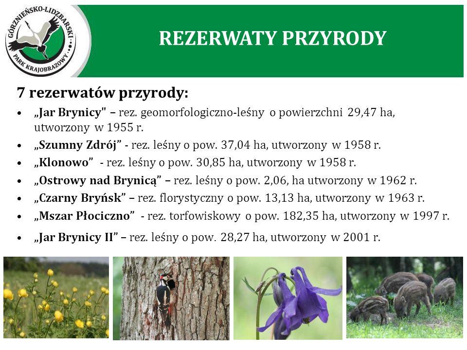 """7 rezerwatów przyrody: """"Jar Brynicy"""