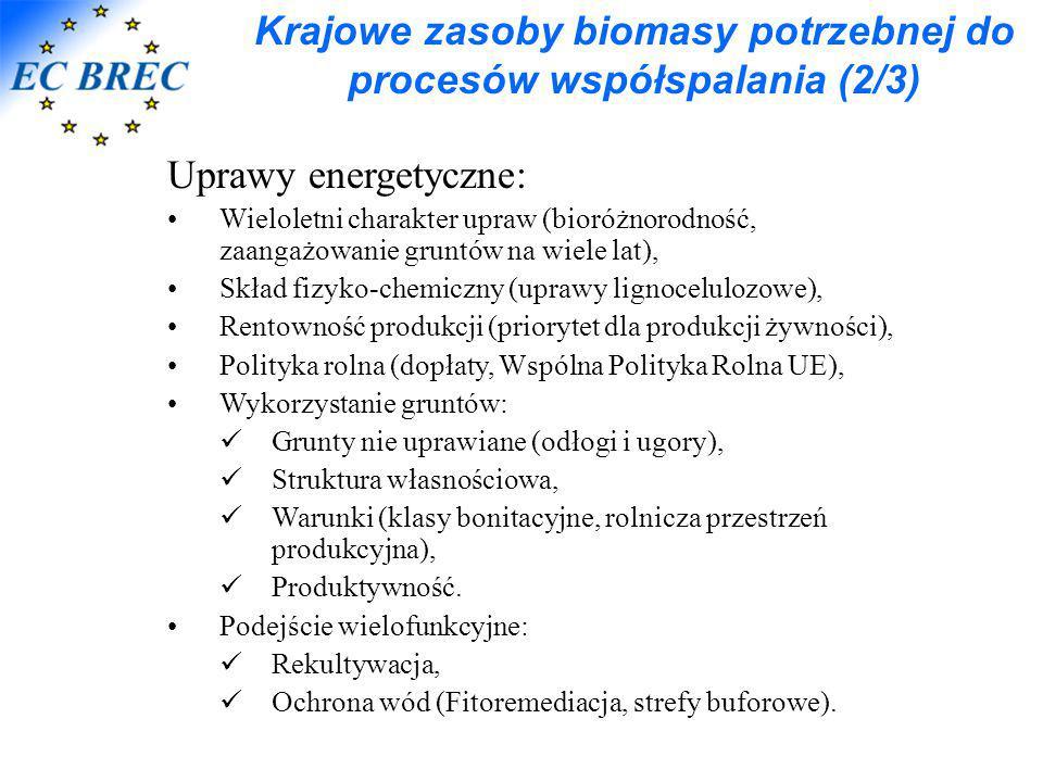 Krajowe zasoby biomasy potrzebnej do procesów współspalania (2/3) Uprawy energetyczne: Wieloletni charakter upraw (bioróżnorodność, zaangażowanie grun