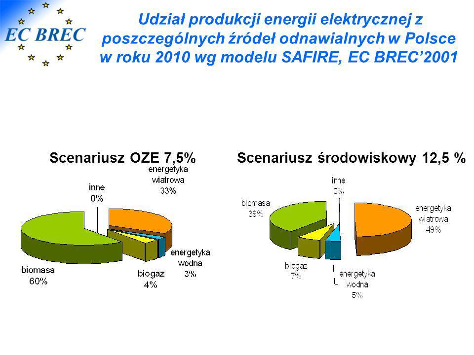 EC BREC'2001 udział energii z OZE w bilansie zużycia energii elektrycznej w % Udział produkcji energii elektrycznej z poszczególnych źródeł odnawialny