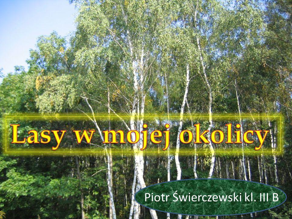 Piotr Świerczewski kl. III B