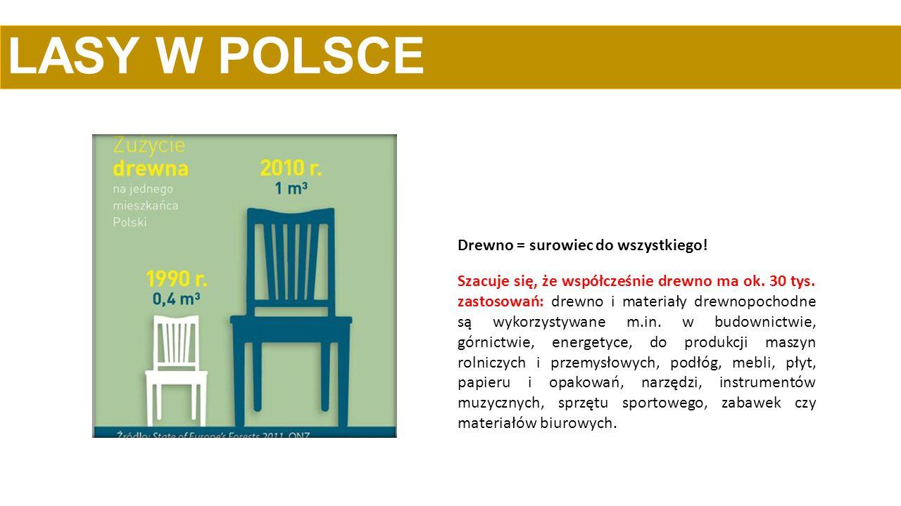 Polskie produkty powstałe z użyciem drewna – meble, stolarka okienna i drzwiowa, jachty czy papier i opakowania – to prawdziwe przeboje rynkowe.