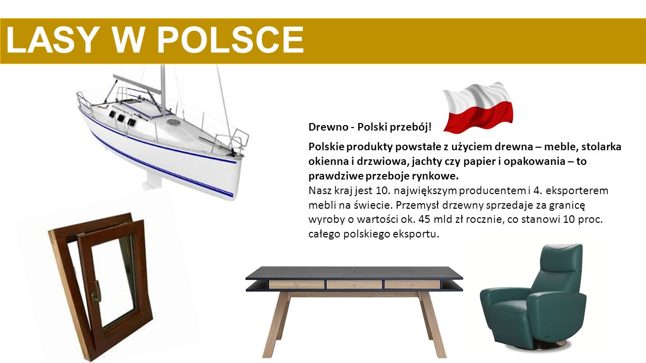 Polskie produkty powstałe z użyciem drewna – meble, stolarka okienna i drzwiowa, jachty czy papier i opakowania – to prawdziwe przeboje rynkowe. Nasz