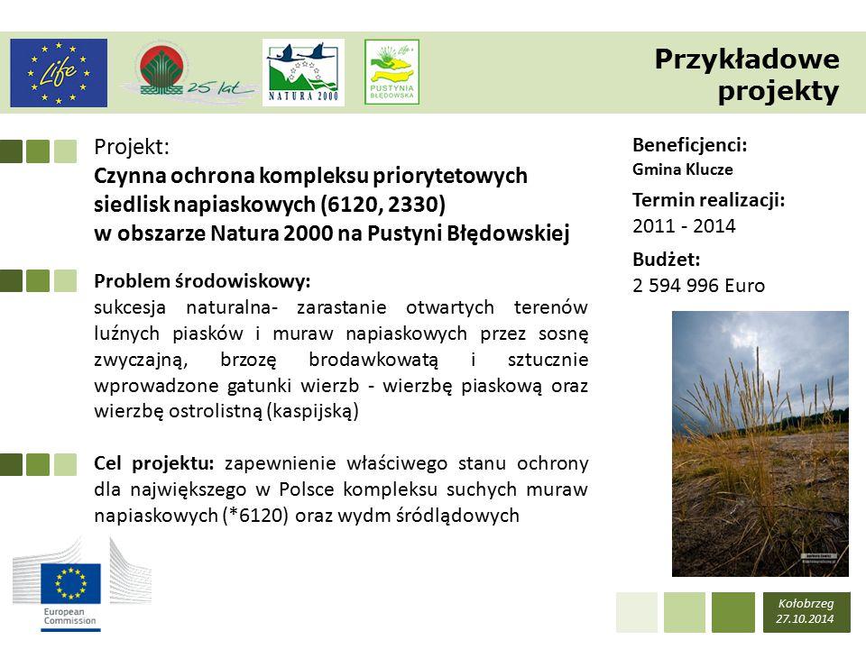 Projekt: Czynna ochrona kompleksu priorytetowych siedlisk napiaskowych (6120, 2330) w obszarze Natura 2000 na Pustyni Błędowskiej Kołobrzeg 27.10.2014 Beneficjenci: Gmina Klucze Termin realizacji: 2011 - 2014 Budżet: 2 594 996 Euro Problem środowiskowy: sukcesja naturalna- zarastanie otwartych terenów luźnych piasków i muraw napiaskowych przez sosnę zwyczajną, brzozę brodawkowatą i sztucznie wprowadzone gatunki wierzb - wierzbę piaskową oraz wierzbę ostrolistną (kaspijską) Cel projektu: zapewnienie właściwego stanu ochrony dla największego w Polsce kompleksu suchych muraw napiaskowych (*6120) oraz wydm śródlądowych Przykładowe projekty