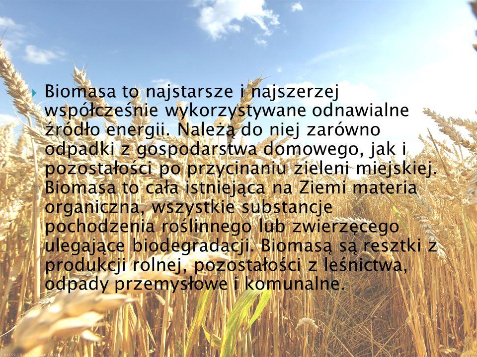 Aleksandra Bednarczyk, 2c