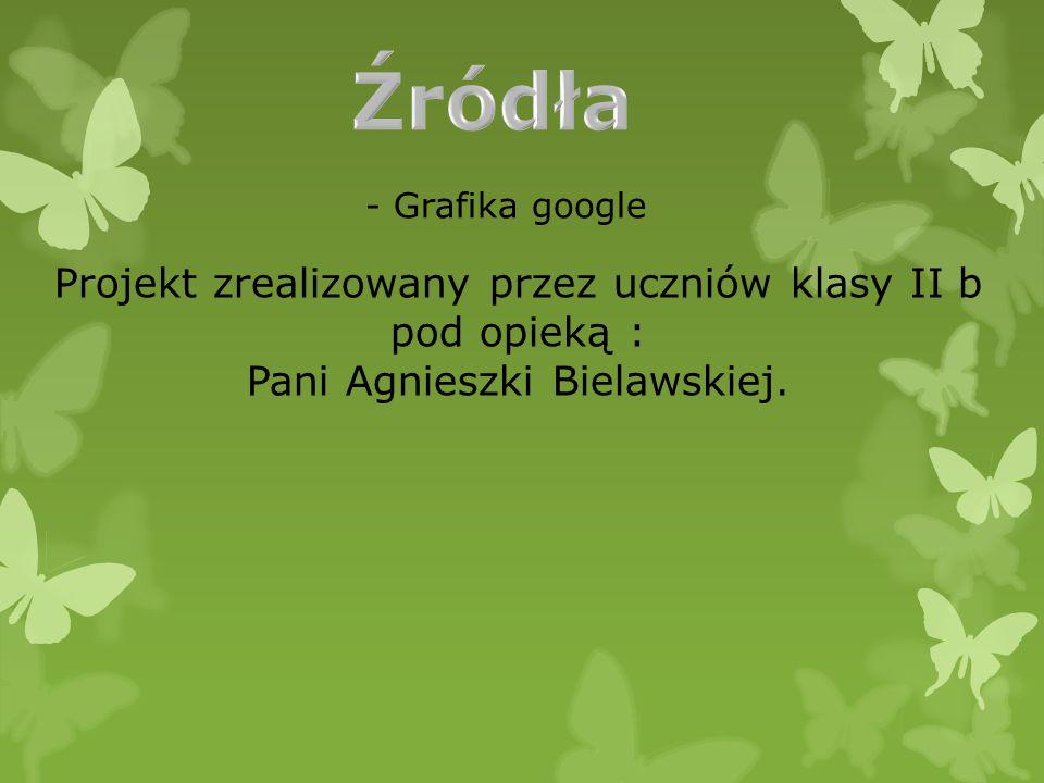 - Grafika google Projekt zrealizowany przez uczniów klasy II b pod opieką : Pani Agnieszki Bielawskiej.