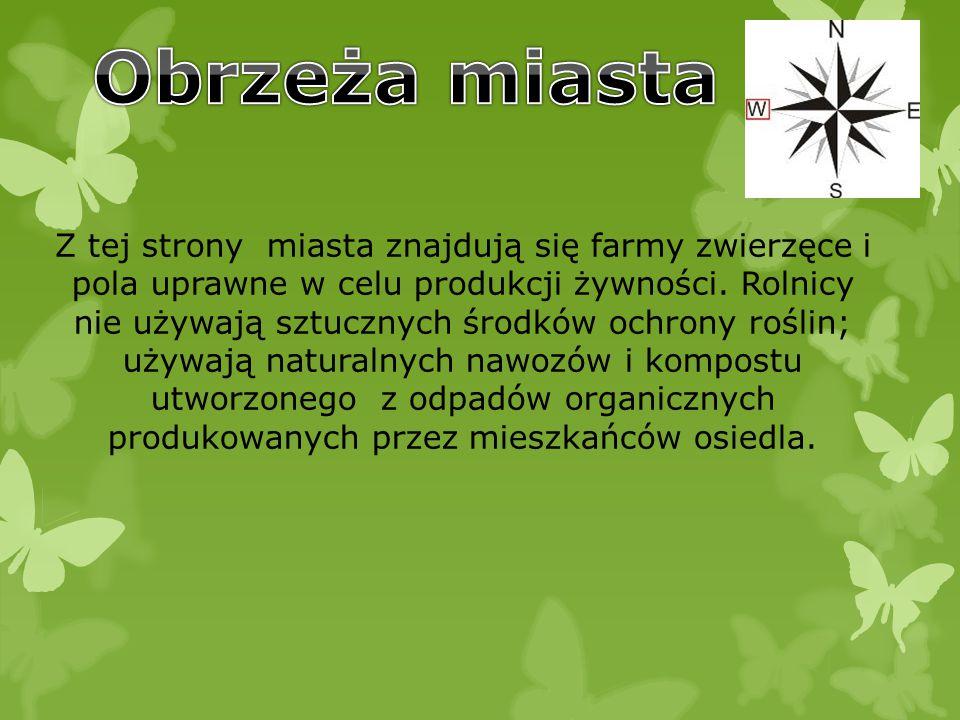 Z tej strony miasta znajdują się farmy zwierzęce i pola uprawne w celu produkcji żywności.