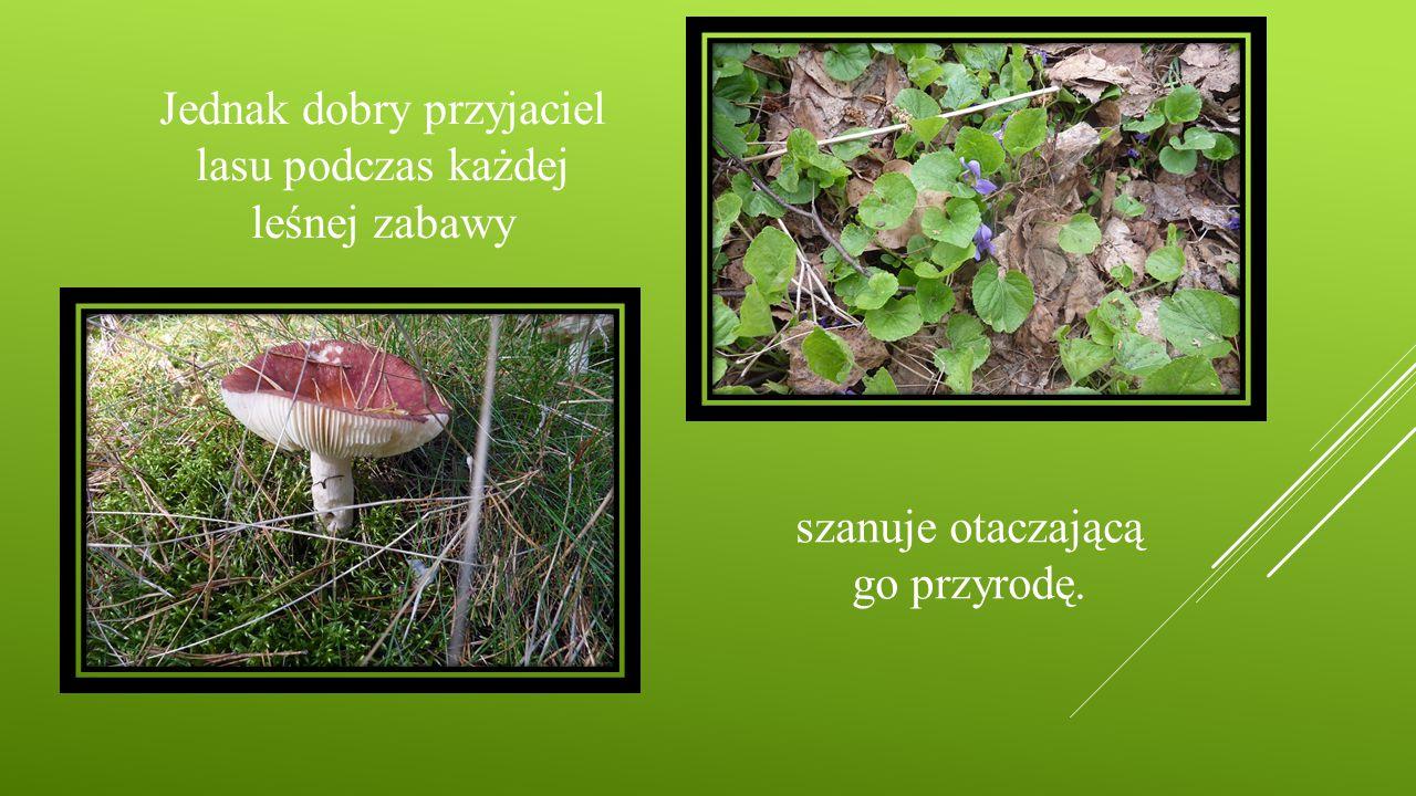 Jednak dobry przyjaciel lasu podczas każdej leśnej zabawy szanuje otaczającą go przyrodę.