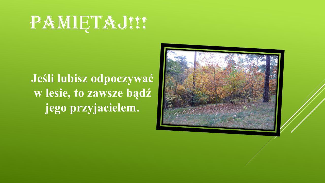 PAMI Ę TAJ!!! Jeśli lubisz odpoczywać w lesie, to zawsze bądź jego przyjacielem.