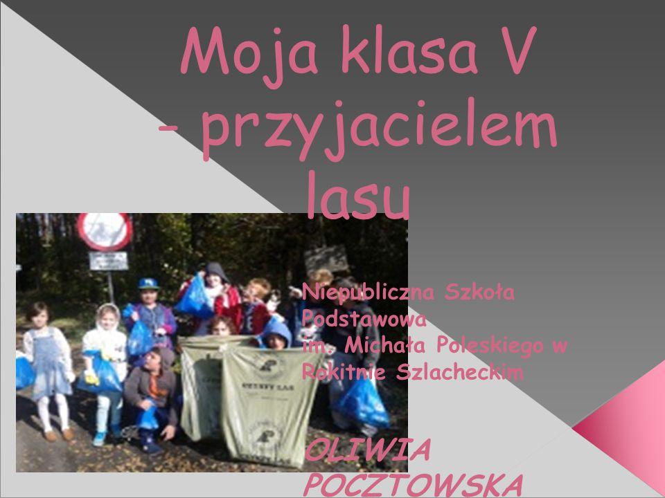 Moja klasa V - przyjacielem lasu Niepubliczna Szkoła Podstawowa im. Michała Poleskiego w Rokitnie Szlacheckim OLIWIA POCZTOWSKA Klasa V
