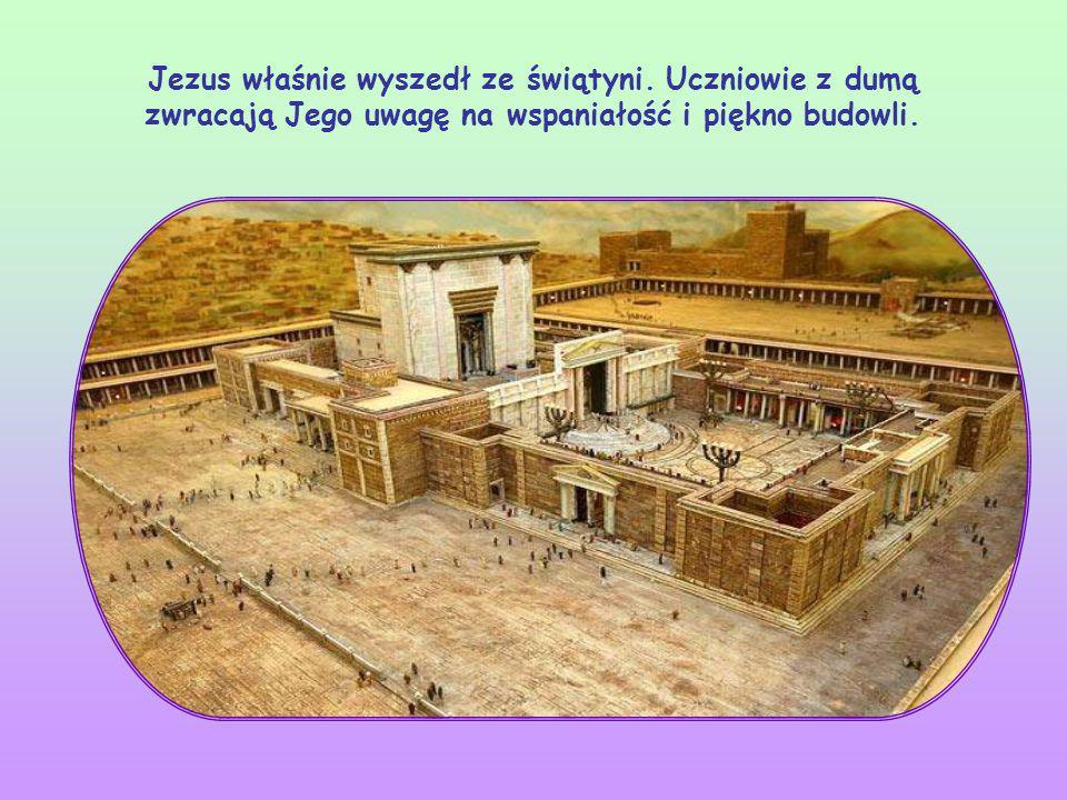 W tych słowach Jezus przede wszystkim przypomina nam, że On przyjdzie.