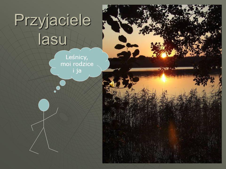 Od 2 roku życia rodzice zabierają mnie w każde wakacje do Puszczy Augustowskiej, a konkretnie do Suchej Rzeczki.