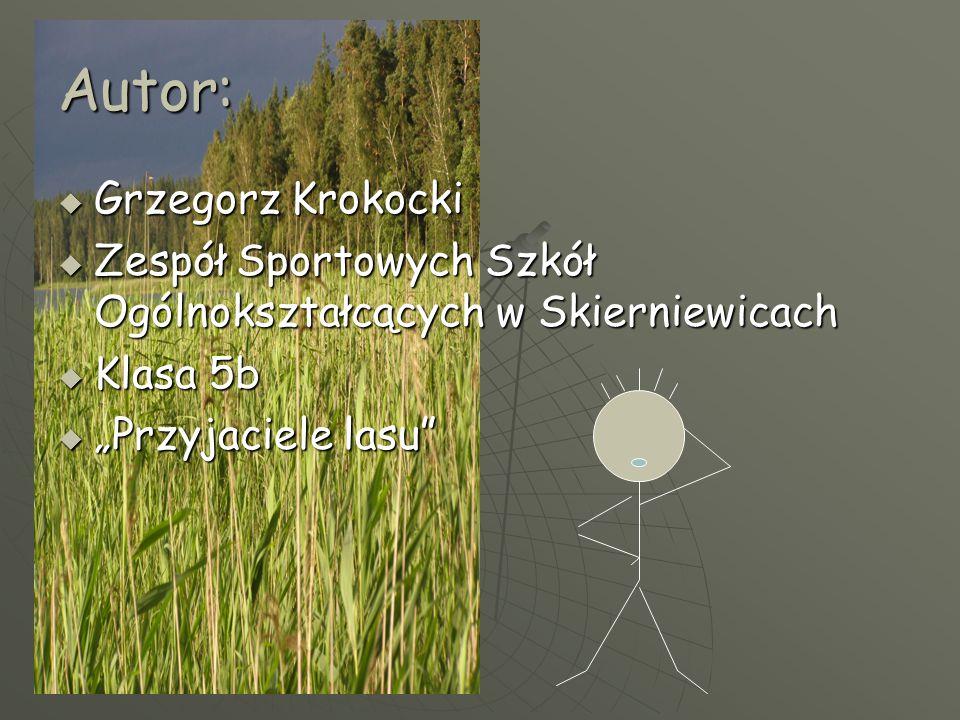 """Autor:  Grzegorz Krokocki  Zespół Sportowych Szkół Ogólnokształcących w Skierniewicach  Klasa 5b  """"Przyjaciele lasu"""