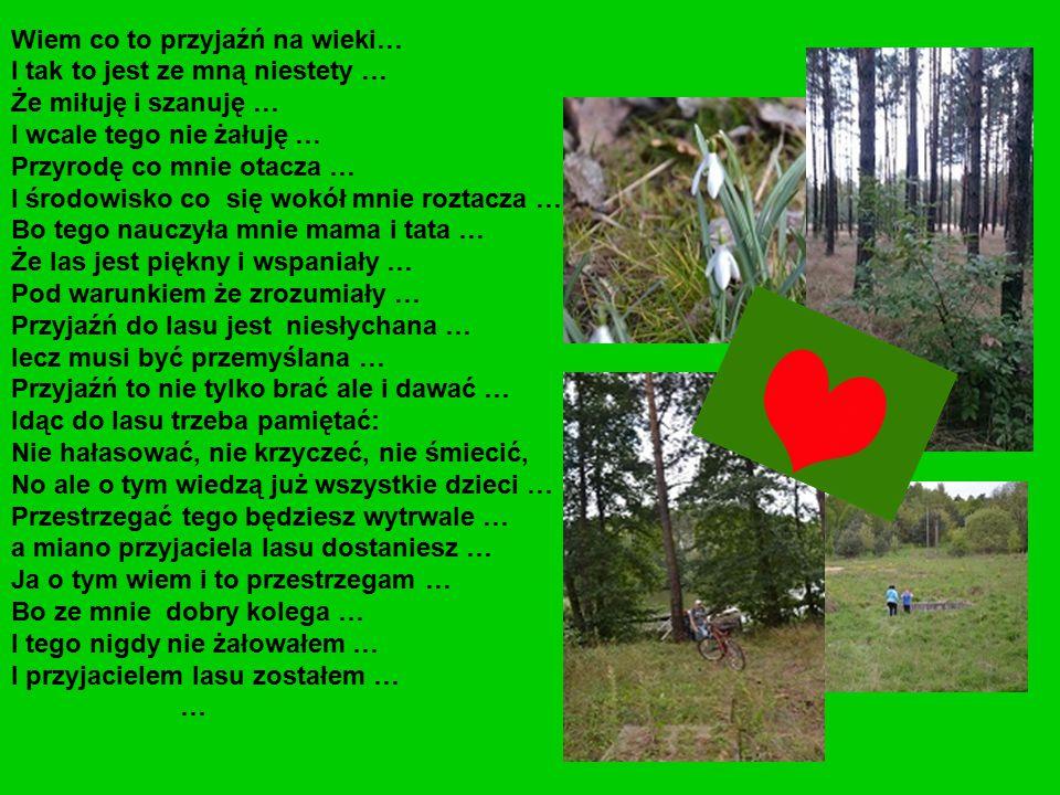 Źle napisany sprawdzian mogę poprawić… Źle wychowanego człowieka nie można drugi raz wychować… Decyzje nasze w związku z przyrodą, środowiskiem, lasem są nie odwracalne i nie można ich poprawić…