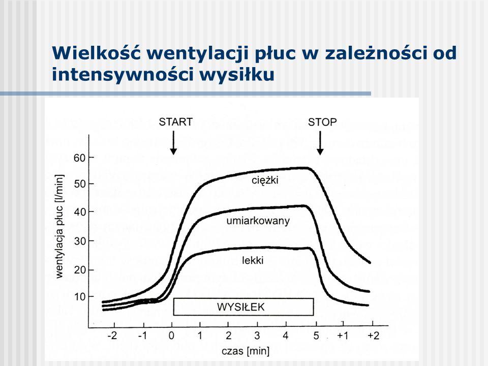 Wielkość wentylacji płuc w zależności od intensywności wysiłku