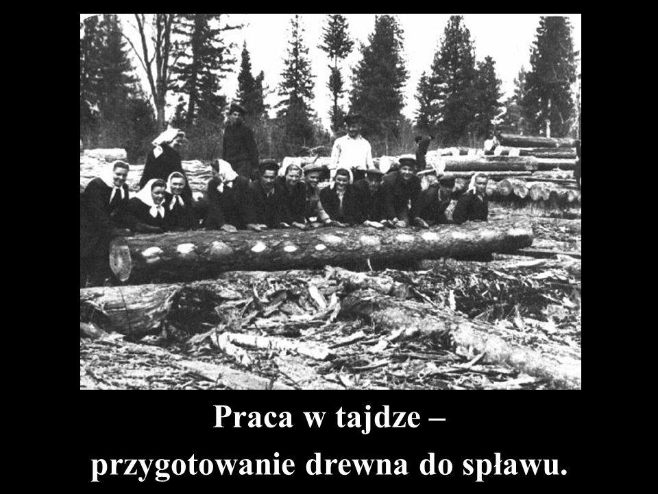 Praca w tajdze – przygotowanie drewna do spławu.