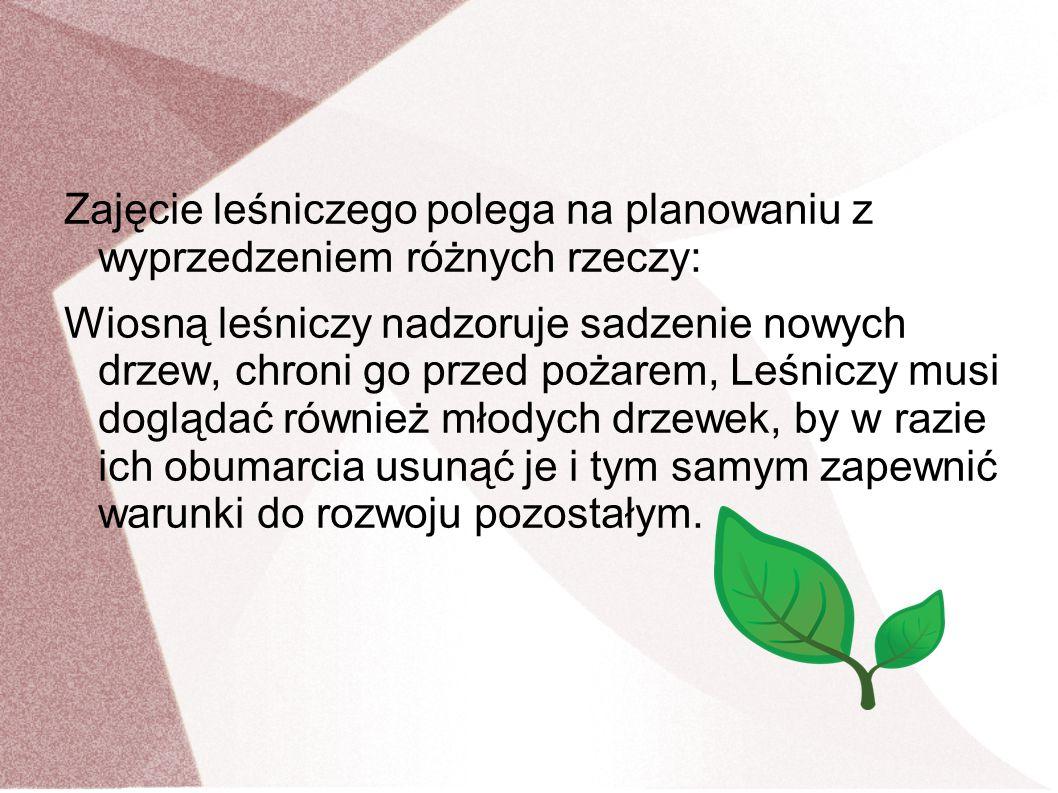 Zajęcie leśniczego polega na planowaniu z wyprzedzeniem różnych rzeczy: Wiosną leśniczy nadzoruje sadzenie nowych drzew, chroni go przed pożarem, Leśn
