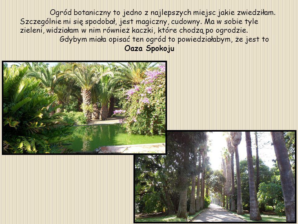 Ogród botaniczny to jedno z najlepszych miejsc jakie zwiedziłam. Szczególnie mi się spodobał, jest magiczny, cudowny. Ma w sobie tyle zieleni, widział