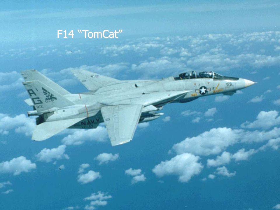 """F14 """"TomCat"""""""