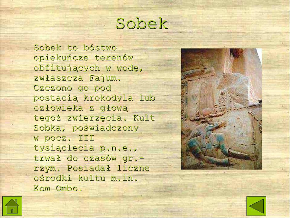 Sobek Sobek to bóstwo opiekuńcze terenów obfitujących w wodę, zwłaszcza Fajum.