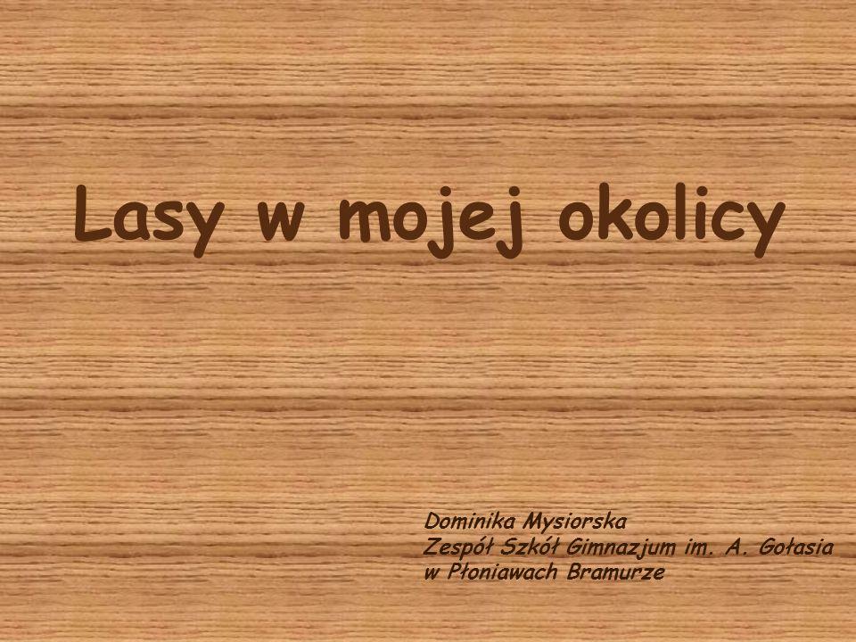 Lasy w mojej okolicy Dominika Mysiorska Zespół Szkół Gimnazjum im. A. Gołasia w Płoniawach Bramurze